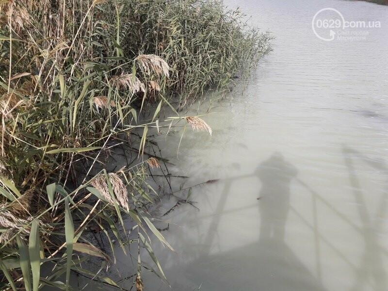 """В Мариуполе вода  под фильтровальной станцией """"Воды Донбасса"""" стала белой, - ФОТОФАКТ, фото-5"""