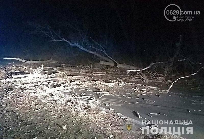 На трассе Волноваха-Мариуполь автомобиль врезался в поваленное дерево, - ФОТО, фото-6