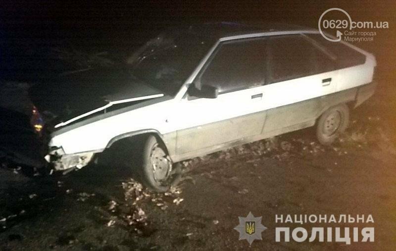 На трассе Волноваха-Мариуполь автомобиль врезался в поваленное дерево, - ФОТО, фото-1