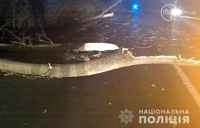 На трассе Волноваха-Мариуполь автомобиль врезался в поваленное дерево, - ФОТО, фото-2
