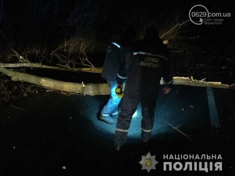 На трассе Волноваха-Мариуполь автомобиль врезался в поваленное дерево, - ФОТО, фото-5