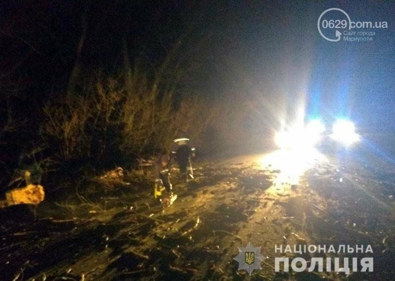 На трассе Волноваха-Мариуполь автомобиль врезался в поваленное дерево, - ФОТО, фото-4