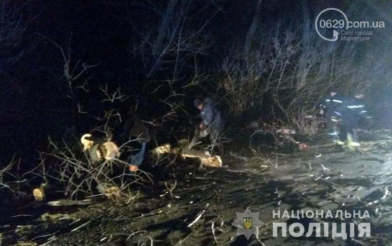 На трассе Волноваха-Мариуполь автомобиль врезался в поваленное дерево, - ФОТО, фото-3