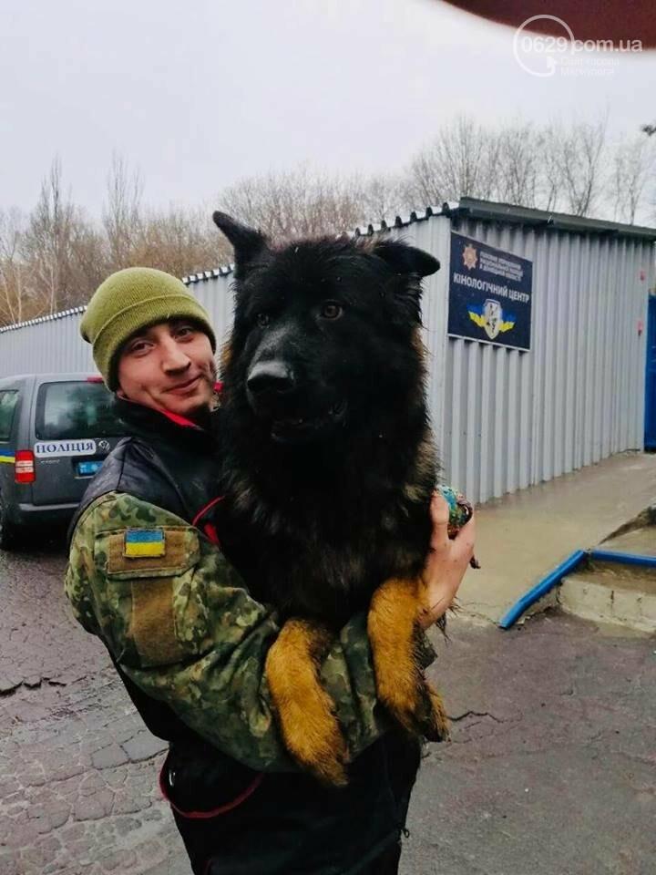 Самый известный пес Донецкой полиции остался без первого хозяина, фото-2