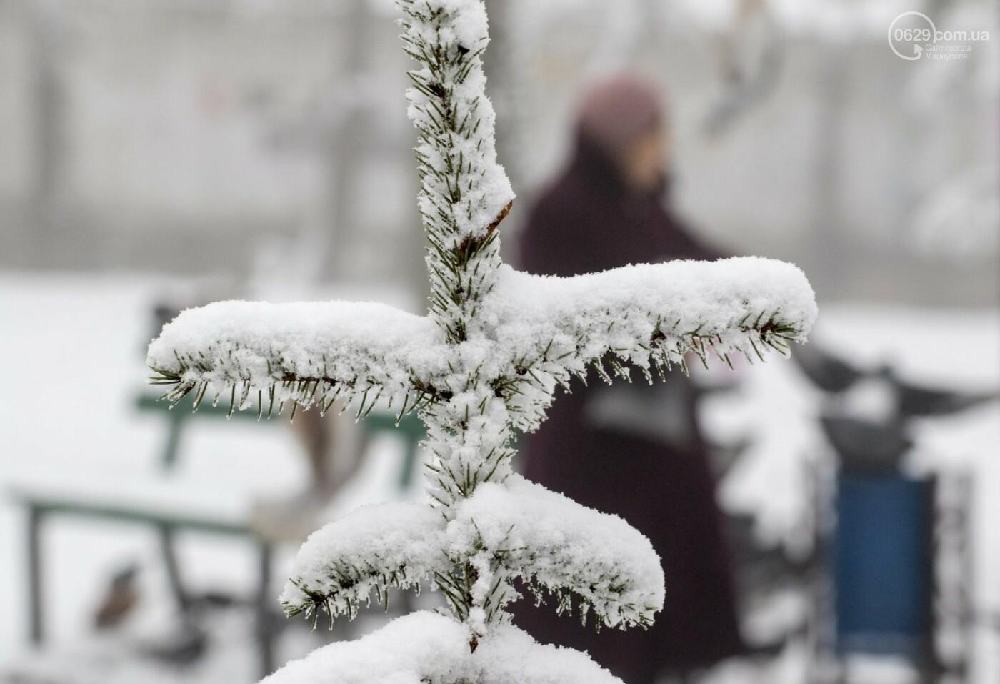 38 фотографий, одна ворона и одна синица... ФОТОРЕПОРТАЖ для тех, кто проспал первый настоящий снег, фото-9