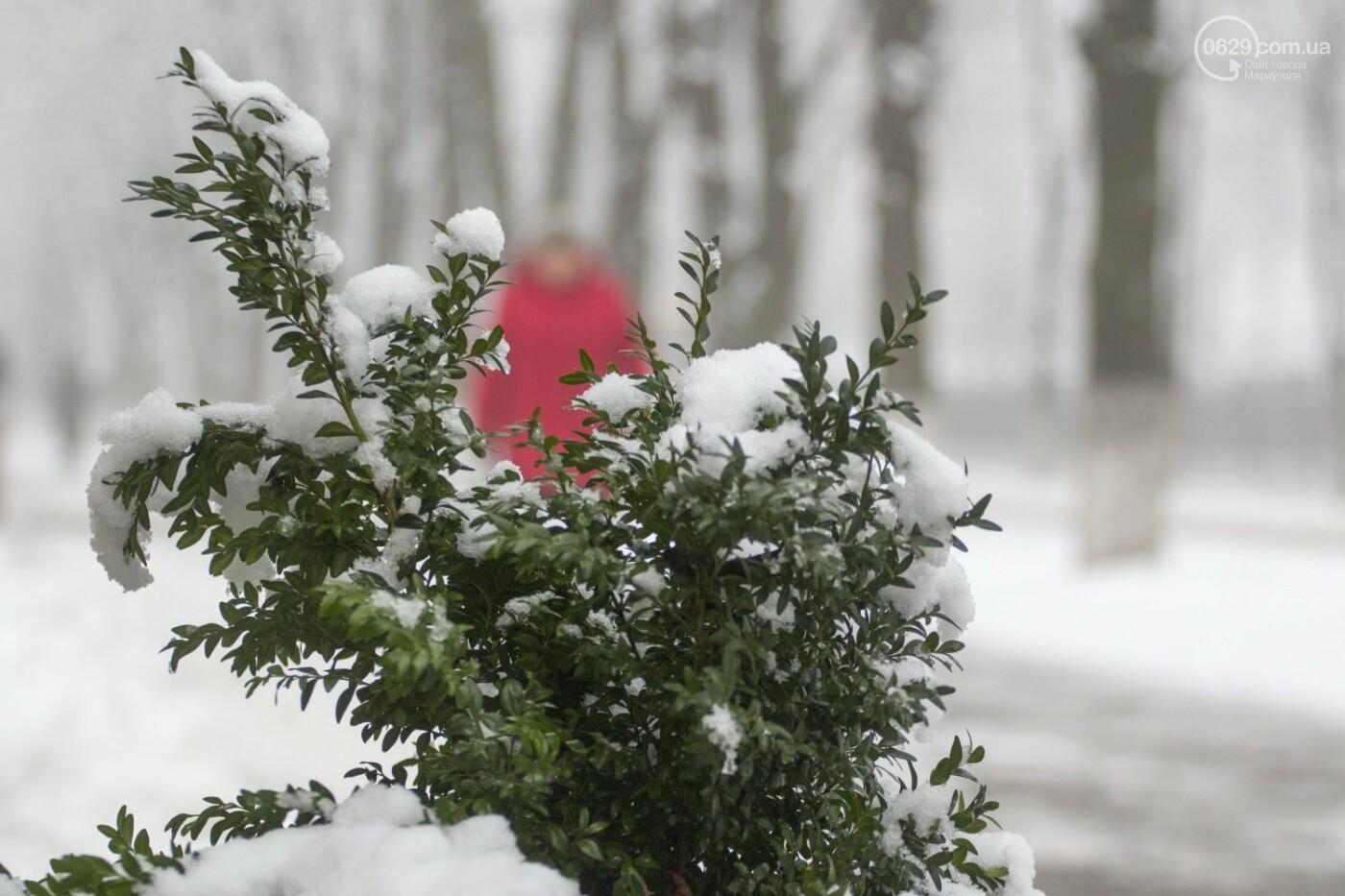 38 фотографий, одна ворона и одна синица... ФОТОРЕПОРТАЖ для тех, кто проспал первый настоящий снег, фото-11