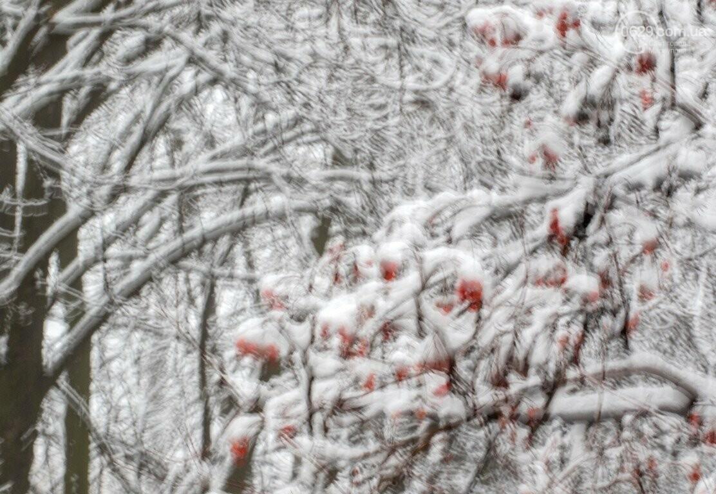 38 фотографий, одна ворона и одна синица... ФОТОРЕПОРТАЖ для тех, кто проспал первый настоящий снег, фото-38