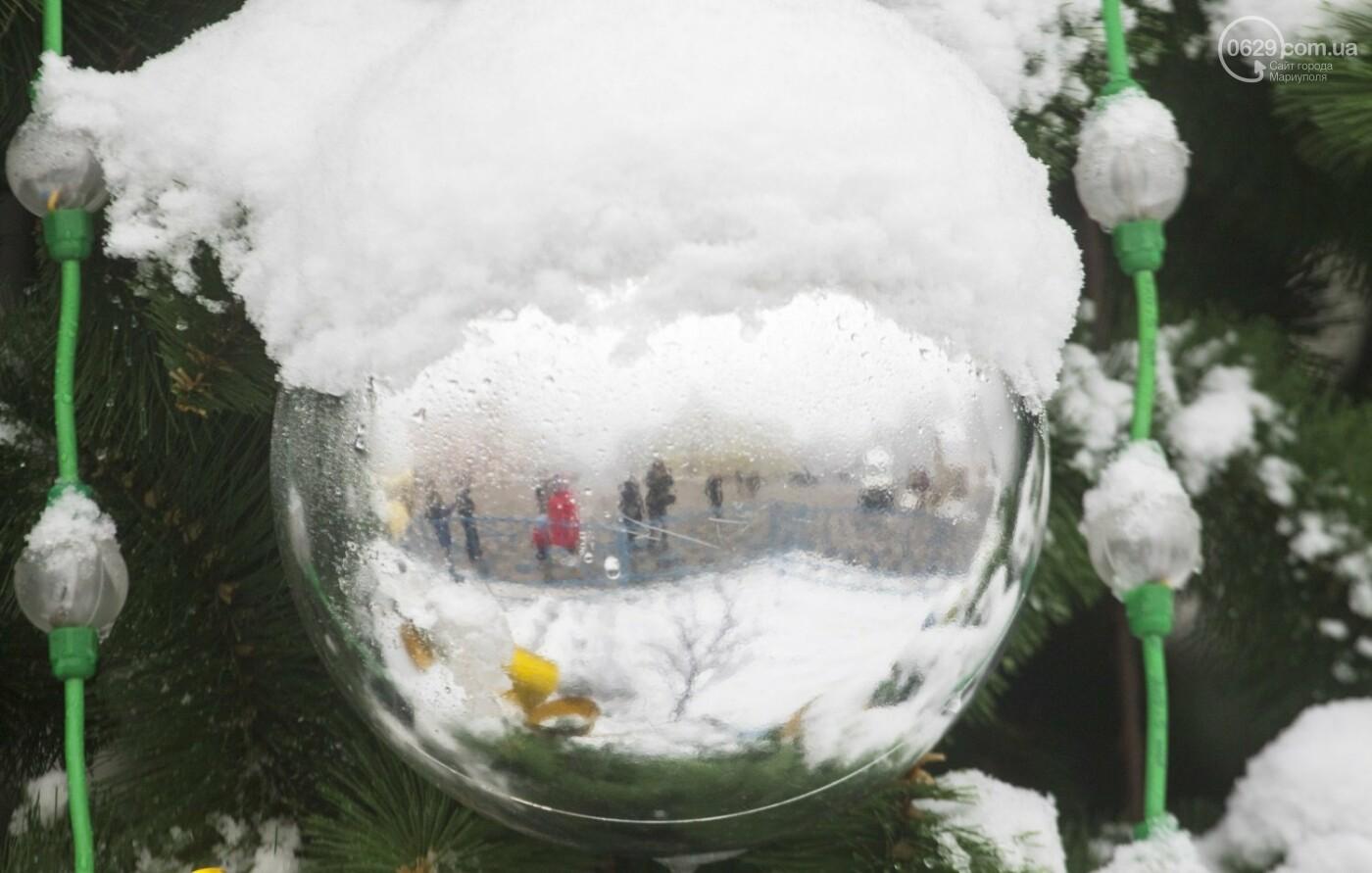 38 фотографий, одна ворона и одна синица... ФОТОРЕПОРТАЖ для тех, кто проспал первый настоящий снег, фото-16