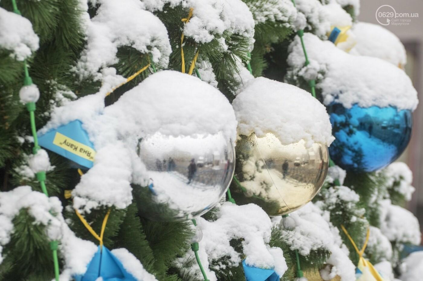 38 фотографий, одна ворона и одна синица... ФОТОРЕПОРТАЖ для тех, кто проспал первый настоящий снег, фото-18