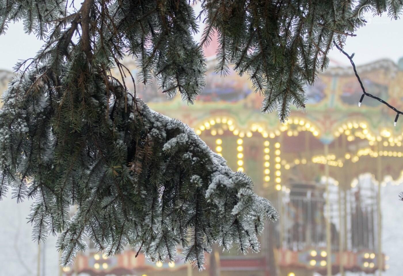 38 фотографий, одна ворона и одна синица... ФОТОРЕПОРТАЖ для тех, кто проспал первый настоящий снег, фото-36