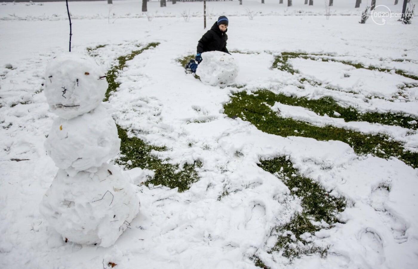 38 фотографий, одна ворона и одна синица... ФОТОРЕПОРТАЖ для тех, кто проспал первый настоящий снег, фото-26