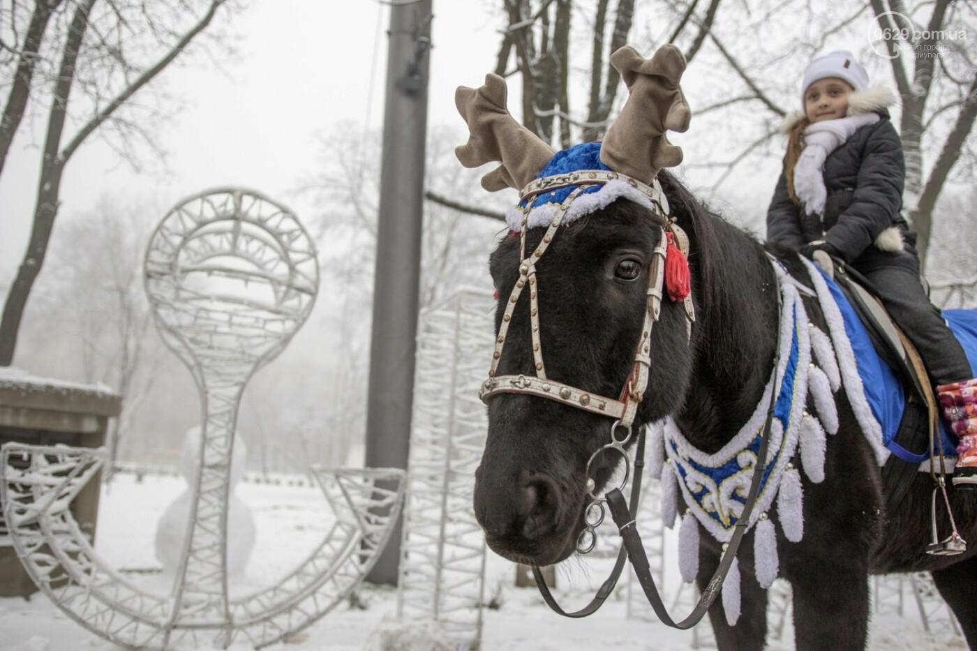 38 фотографий, одна ворона и одна синица... ФОТОРЕПОРТАЖ для тех, кто проспал первый настоящий снег, фото-28