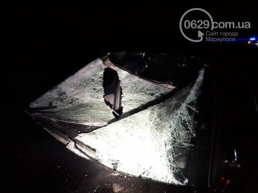 Под Мариуполем легковой автомобиль сбил лошадь, - ФОТО, фото-2