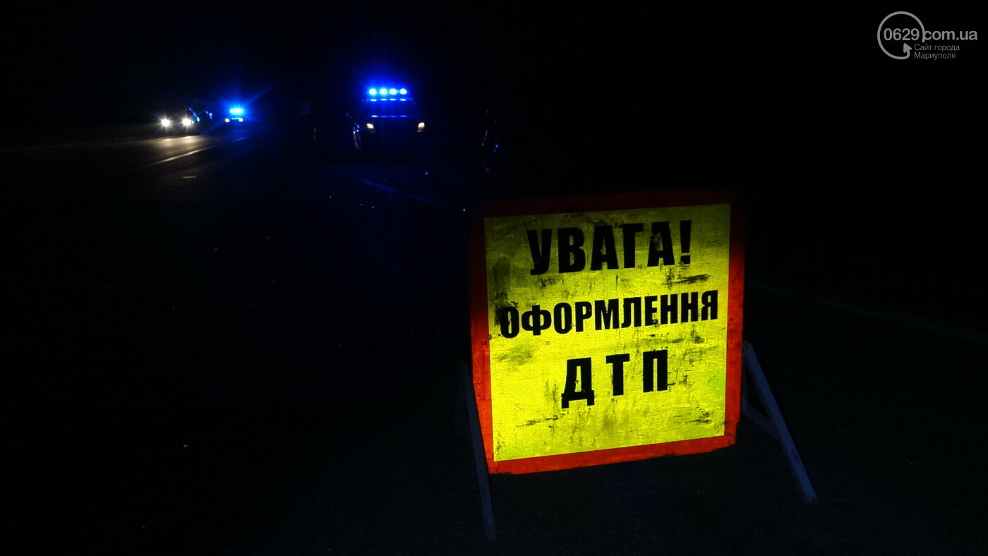 Под Мариуполем легковой автомобиль сбил лошадь, - ФОТО, фото-11