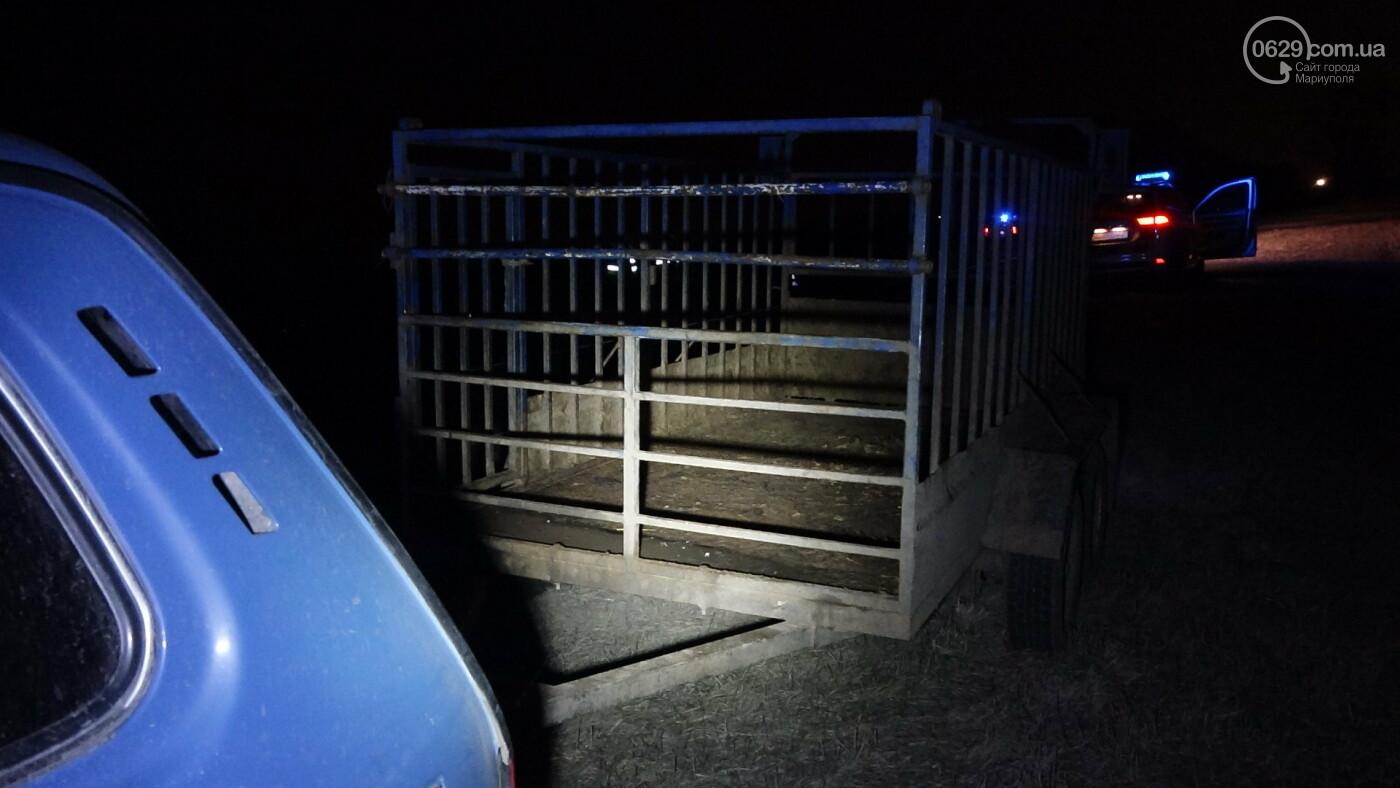 Под Мариуполем легковой автомобиль сбил лошадь, - ФОТО, фото-7