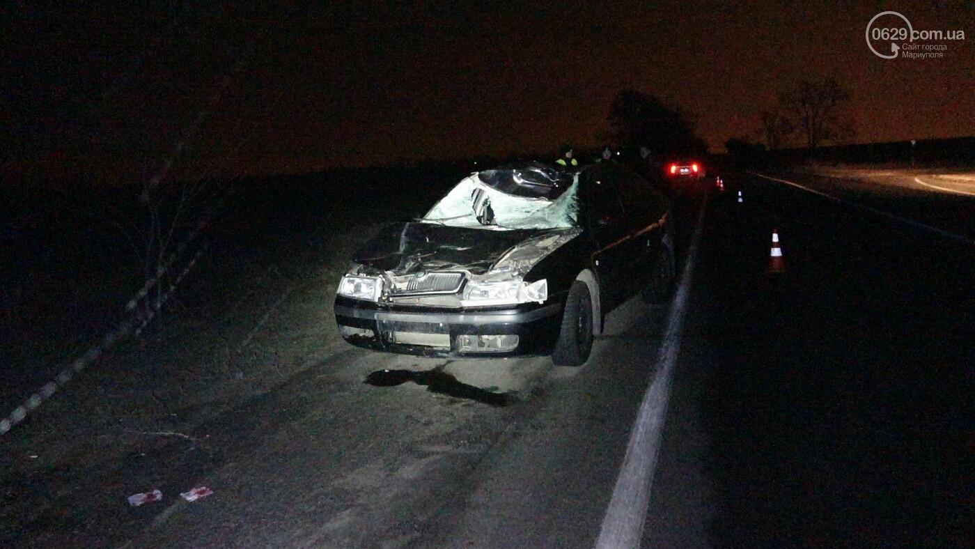 Под Мариуполем легковой автомобиль сбил лошадь, - ФОТО, фото-21