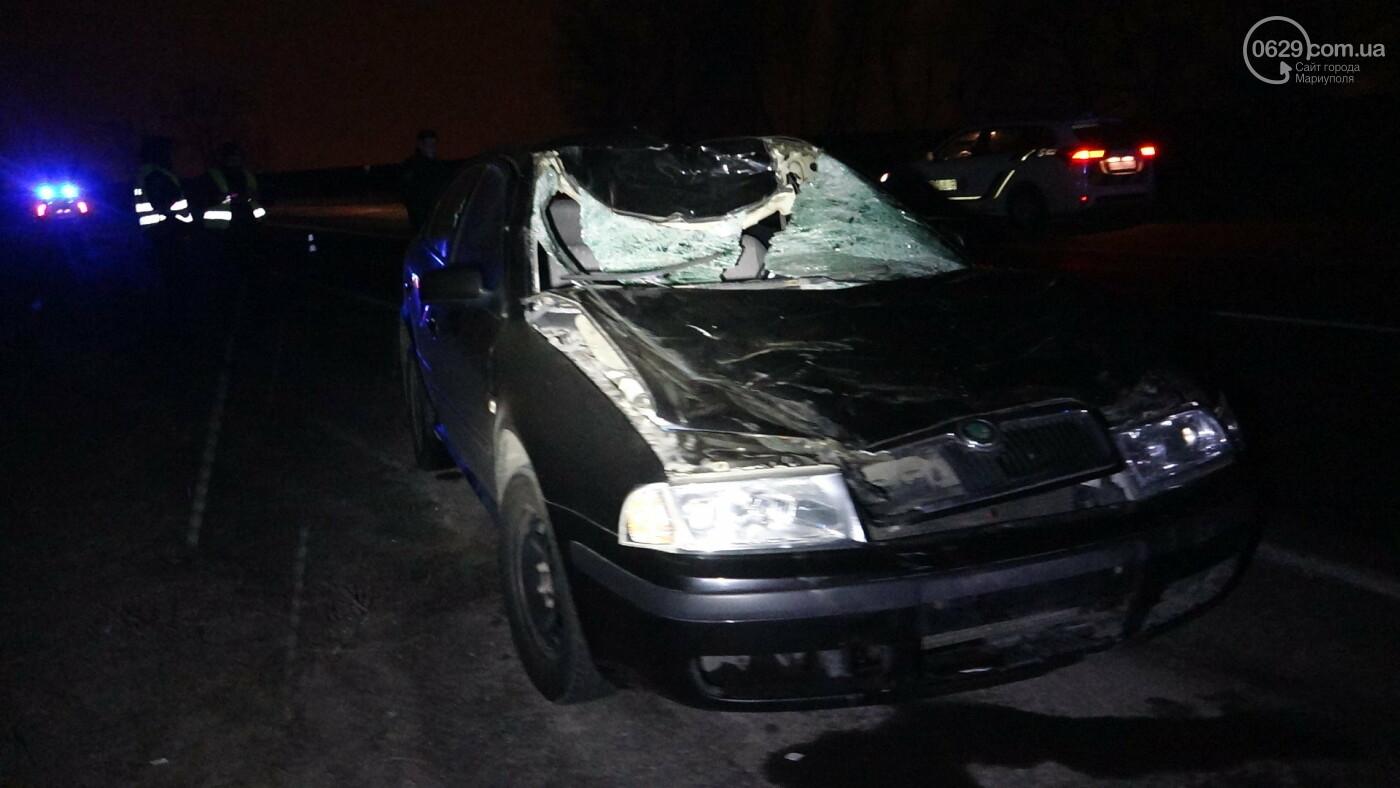 Под Мариуполем легковой автомобиль сбил лошадь, - ФОТО, фото-15