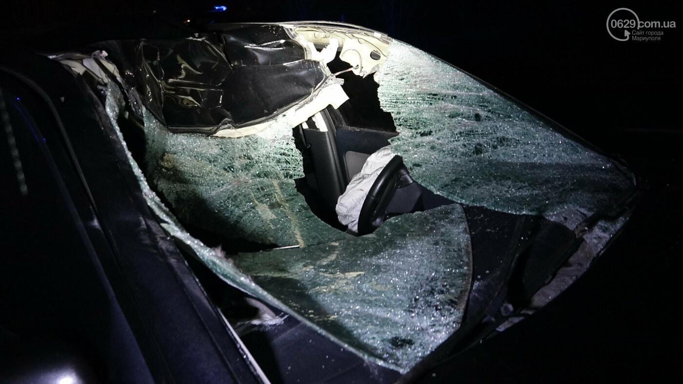 Под Мариуполем легковой автомобиль сбил лошадь, - ФОТО, фото-16