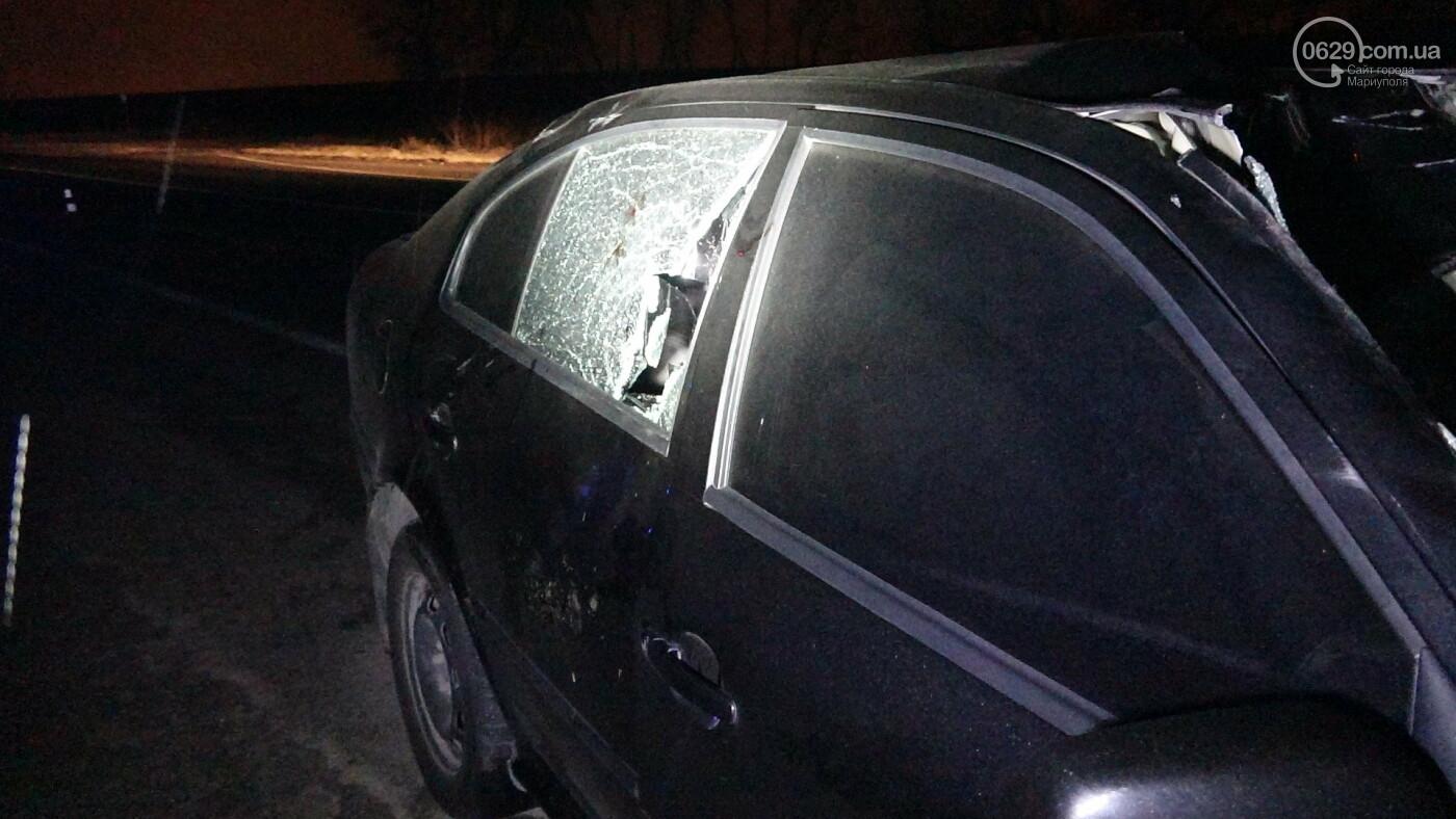Под Мариуполем легковой автомобиль сбил лошадь, - ФОТО, фото-17