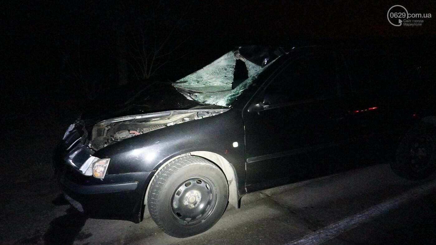 Под Мариуполем легковой автомобиль сбил лошадь, - ФОТО, фото-19