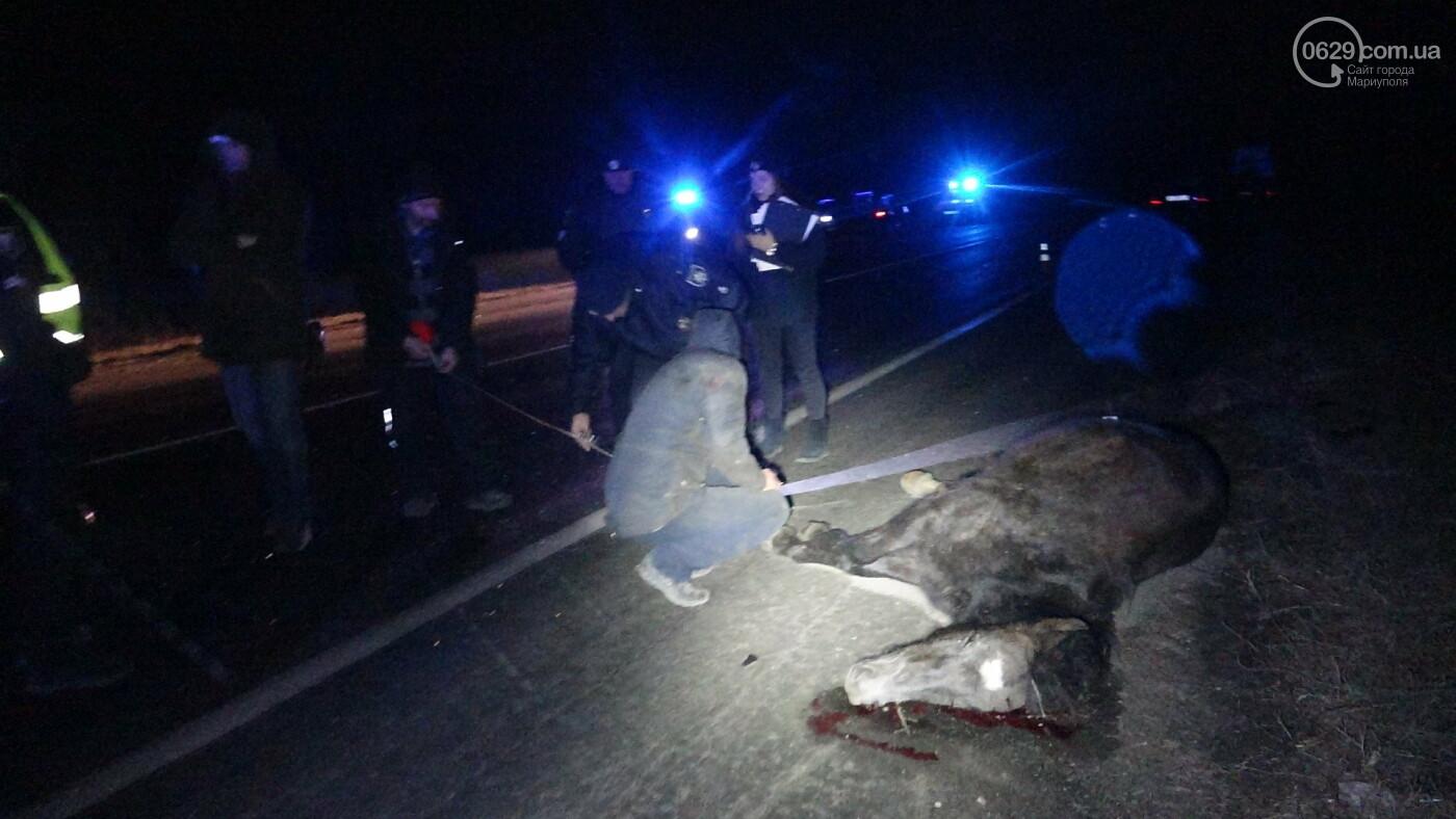 Под Мариуполем легковой автомобиль сбил лошадь, - ФОТО, фото-13