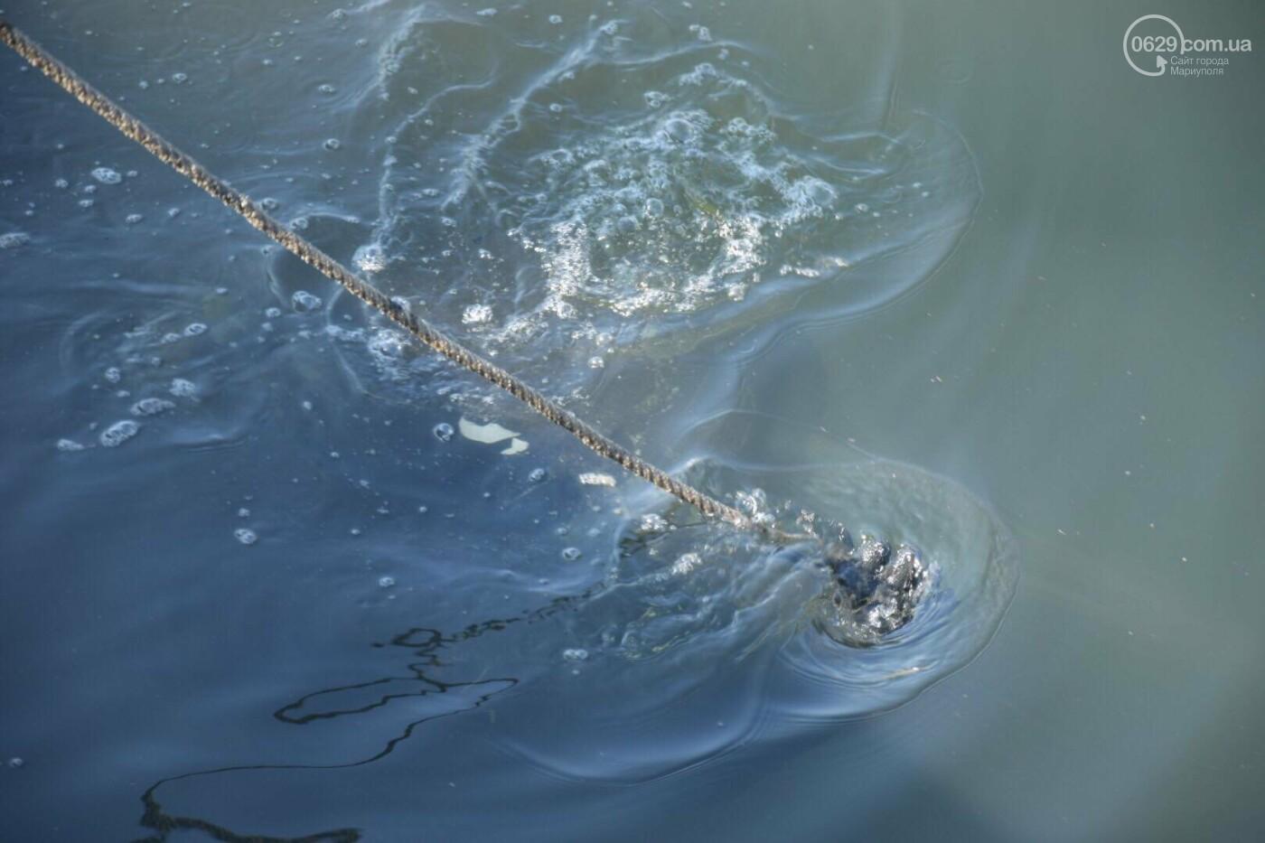 В Мариуполе водолазы очищают Кальчик от пластикового мусора, - ФОТОРЕПОРТАЖ, ВИДЕО, фото-8