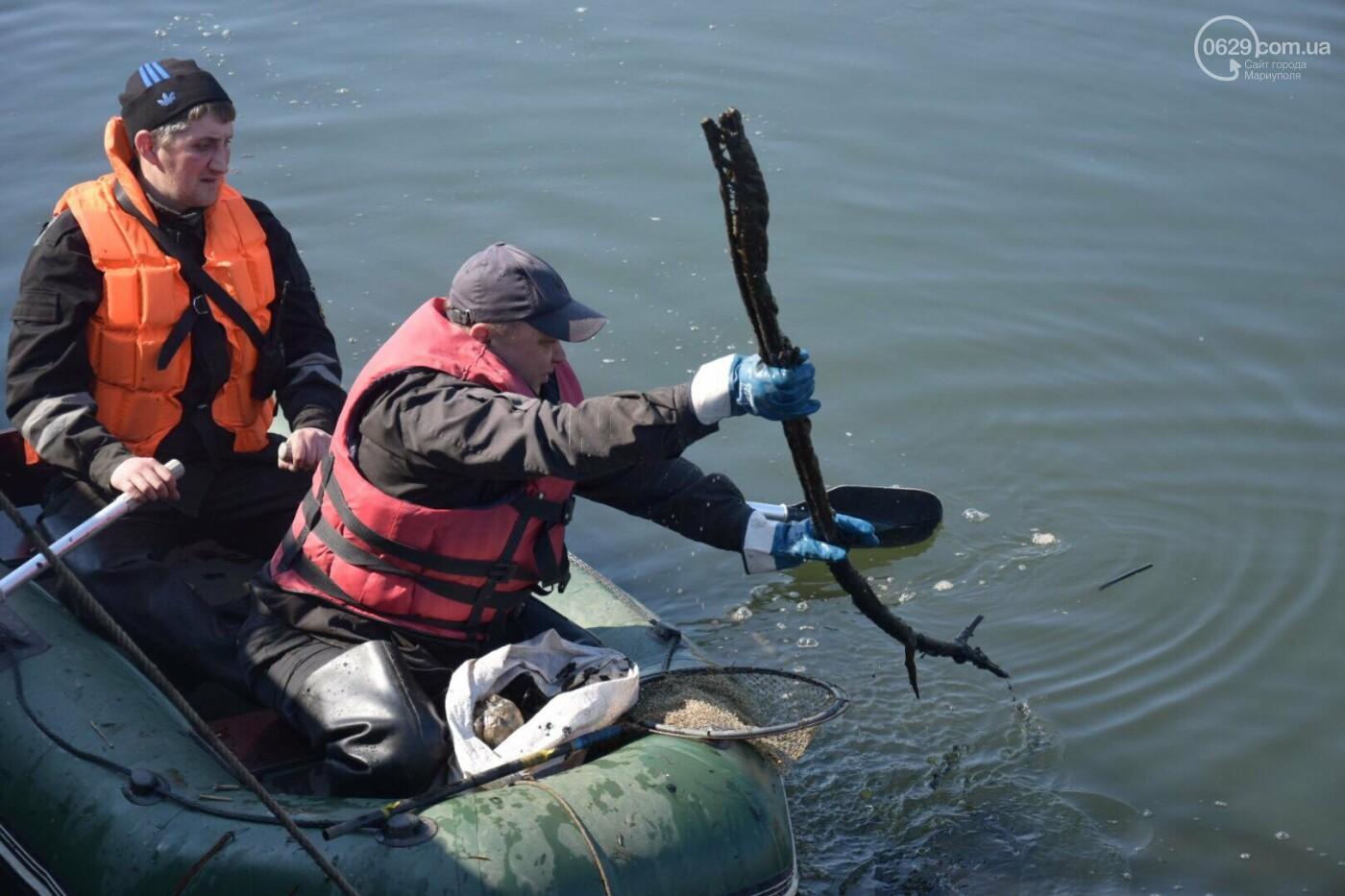 В Мариуполе водолазы очищают Кальчик от пластикового мусора, - ФОТОРЕПОРТАЖ, ВИДЕО, фото-13