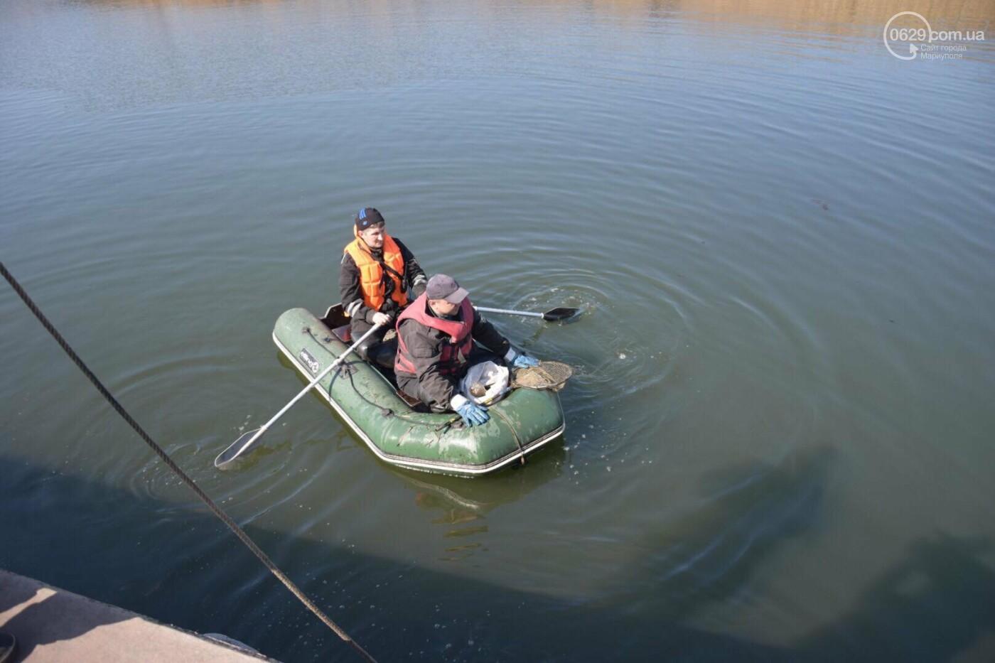 В Мариуполе водолазы очищают Кальчик от пластикового мусора, - ФОТОРЕПОРТАЖ, ВИДЕО, фото-20