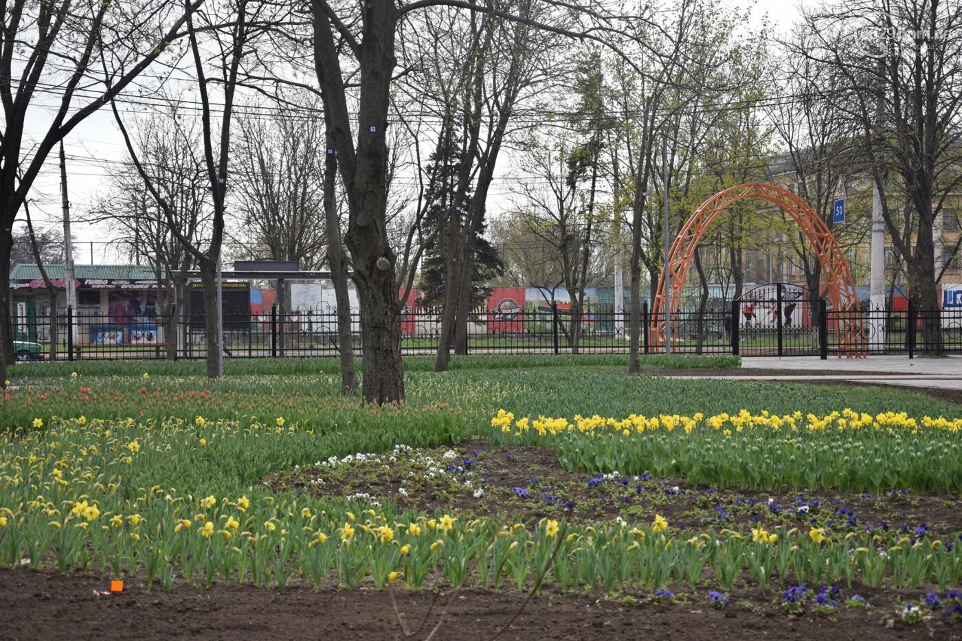 """В обновленном  парке """"Веселка"""" совсем скоро закружит """"Вальс цветов"""", - ФОТО, ВИДЕО, фото-16"""