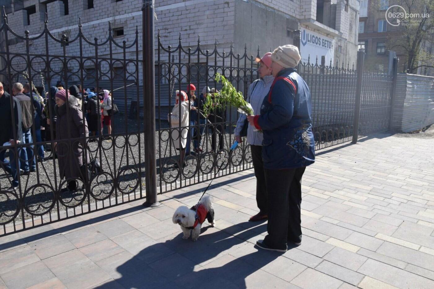 Выборы и верба: как Мариуполь празднует православный праздник, - ФОТОРЕПОРТАЖ, фото-31