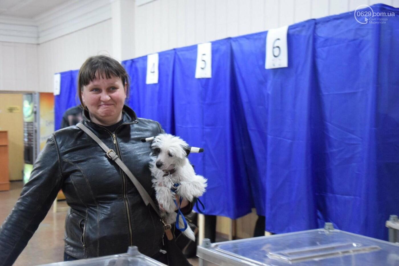 Мариупольцы выбирают Президента в компании животных, - ФОТО, ВИДЕО, фото-1