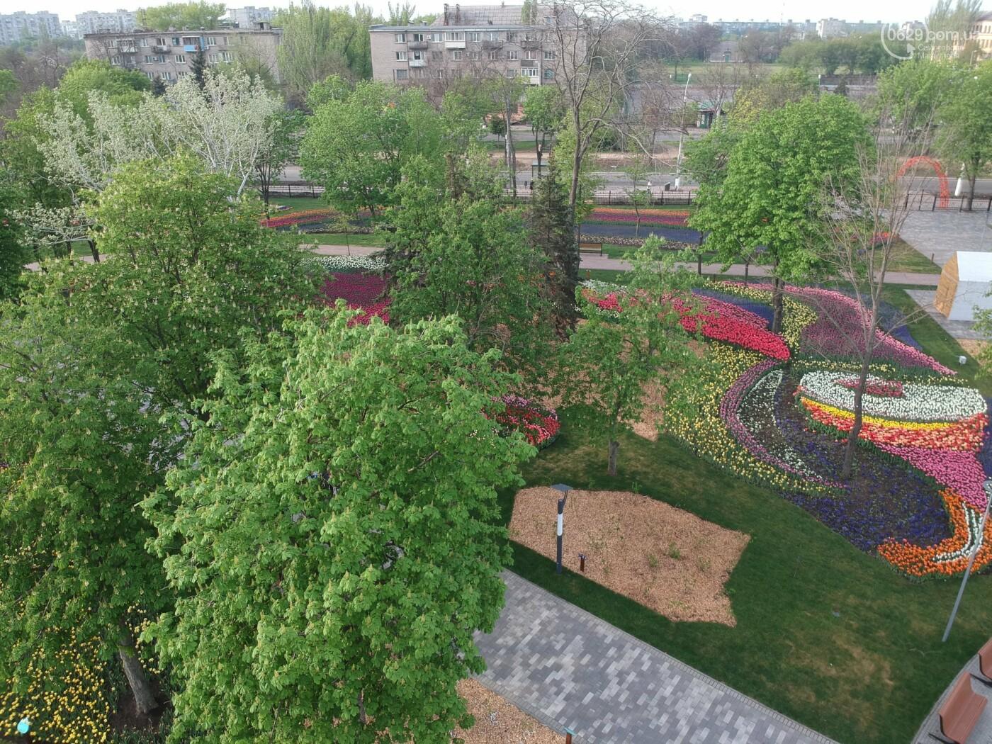 """В Мариуполе парк """"Веселка"""" показали с высоты птичьего полета,- ФОТОФАКТ, фото-5"""