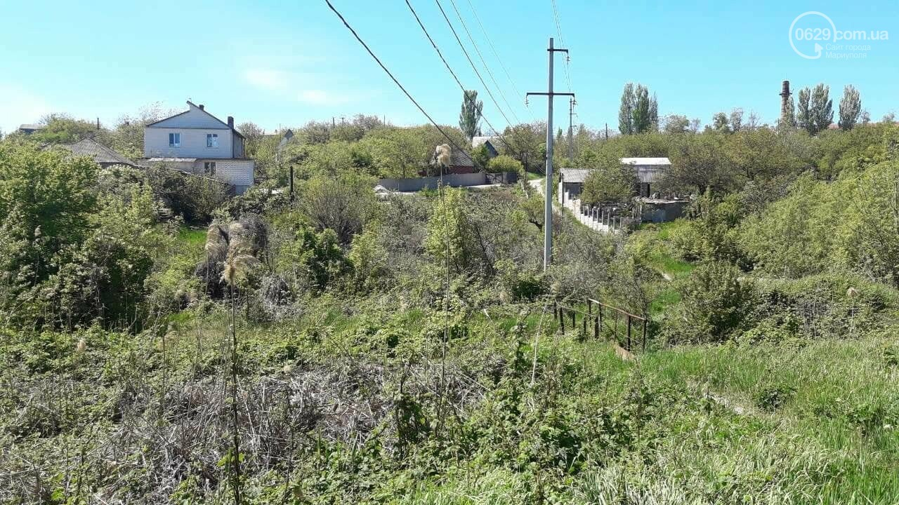 В Мариуполе в балке нашли расчлененный труп,- ФОТО, ДОПОЛНЕНО, фото-5