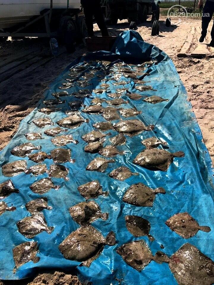 Мариупольские пограничники задержали в Азовском море браконьеров с камбалой,- ФОТО, фото-1