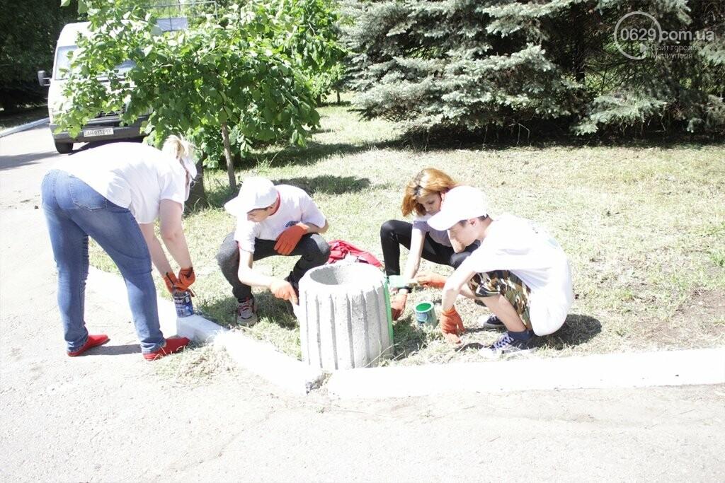 Высаженные аллеи и аккуратный парк: на Донбассе отметили День Европы субботником, фото-5