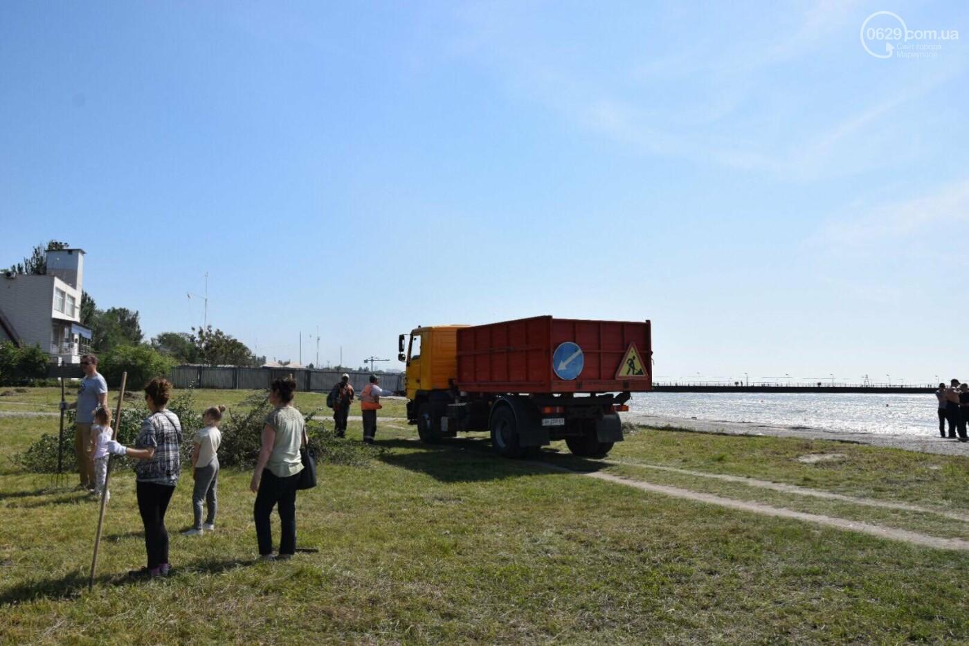 Мариупольцы устроили толоку возле моря, - ФОТО, ВИДЕО, фото-11