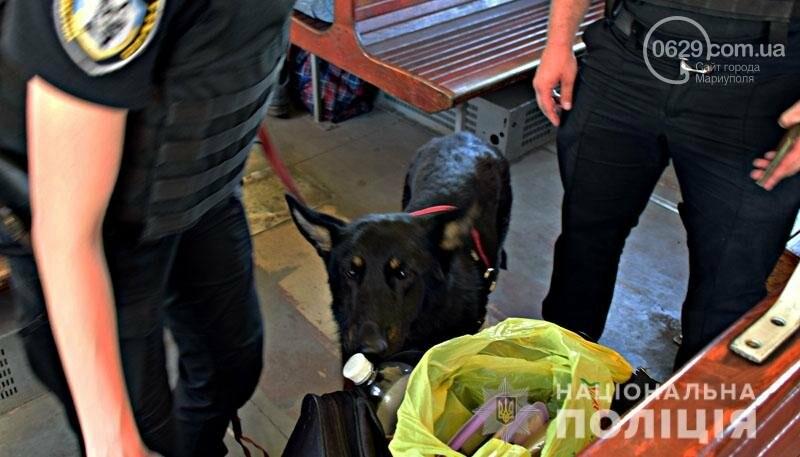 Полиция с собаками проверит поезда Донецкой области,- ФОТО, фото-3