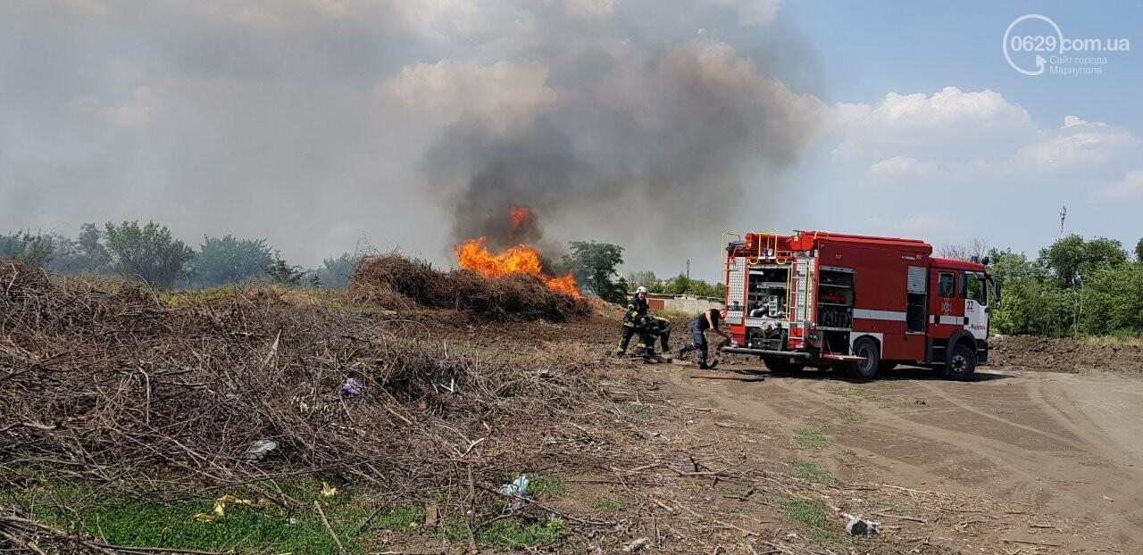 В Мариуполе горит поле, - ФОТО, ВИДЕО, фото-1