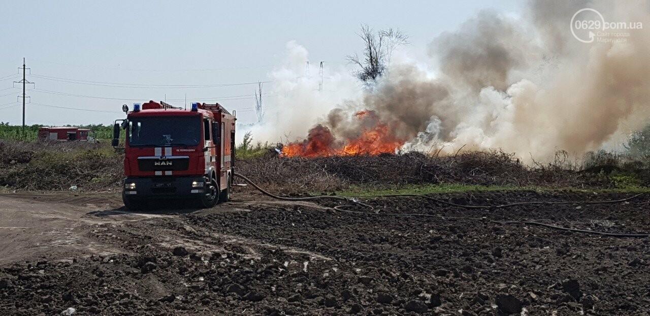 В Мариуполе горит поле, - ФОТО, ВИДЕО, фото-2