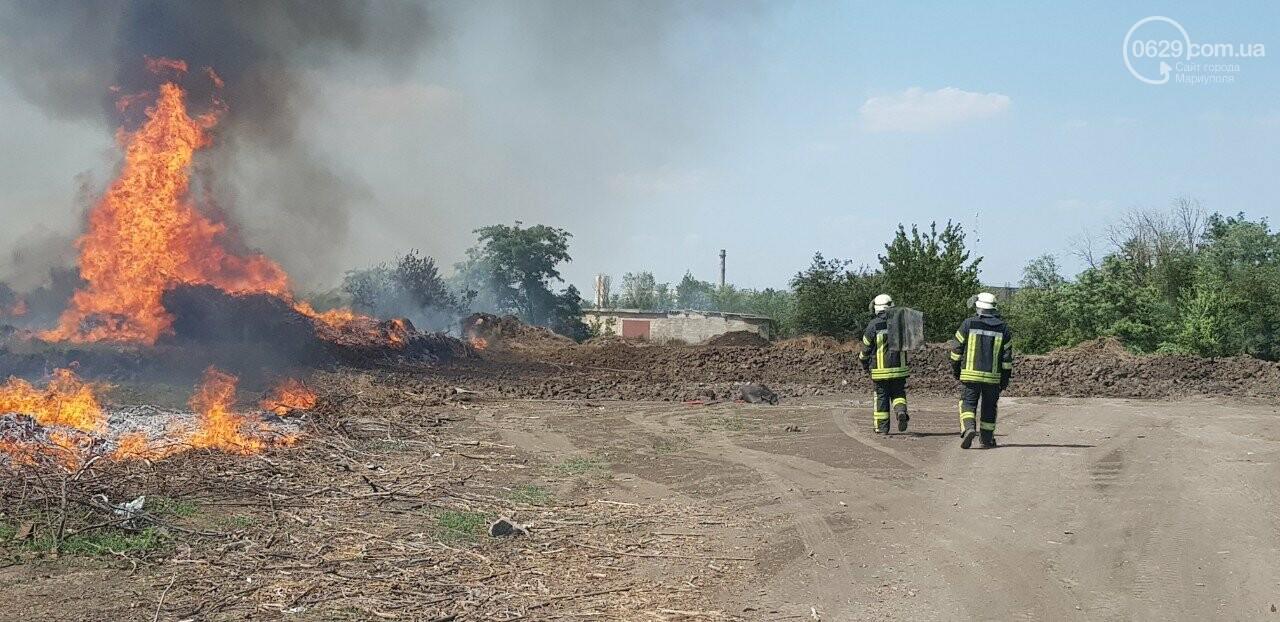 В Мариуполе горит поле, - ФОТО, ВИДЕО, фото-3