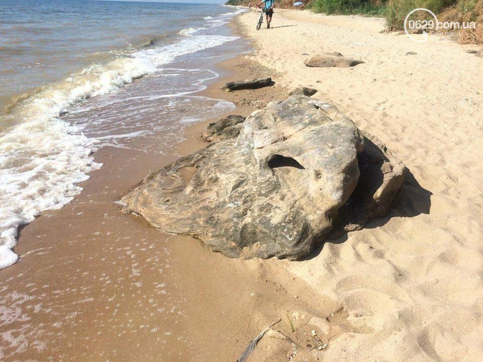ТОП лучших пляжей Мариуполя, - ФОТО, фото-16