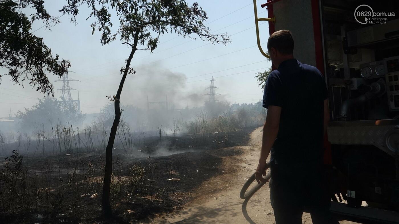 В Мариуполе за автостанцией выгорел гектар сухой травы, - ФОТО, ВИДЕО, фото-21