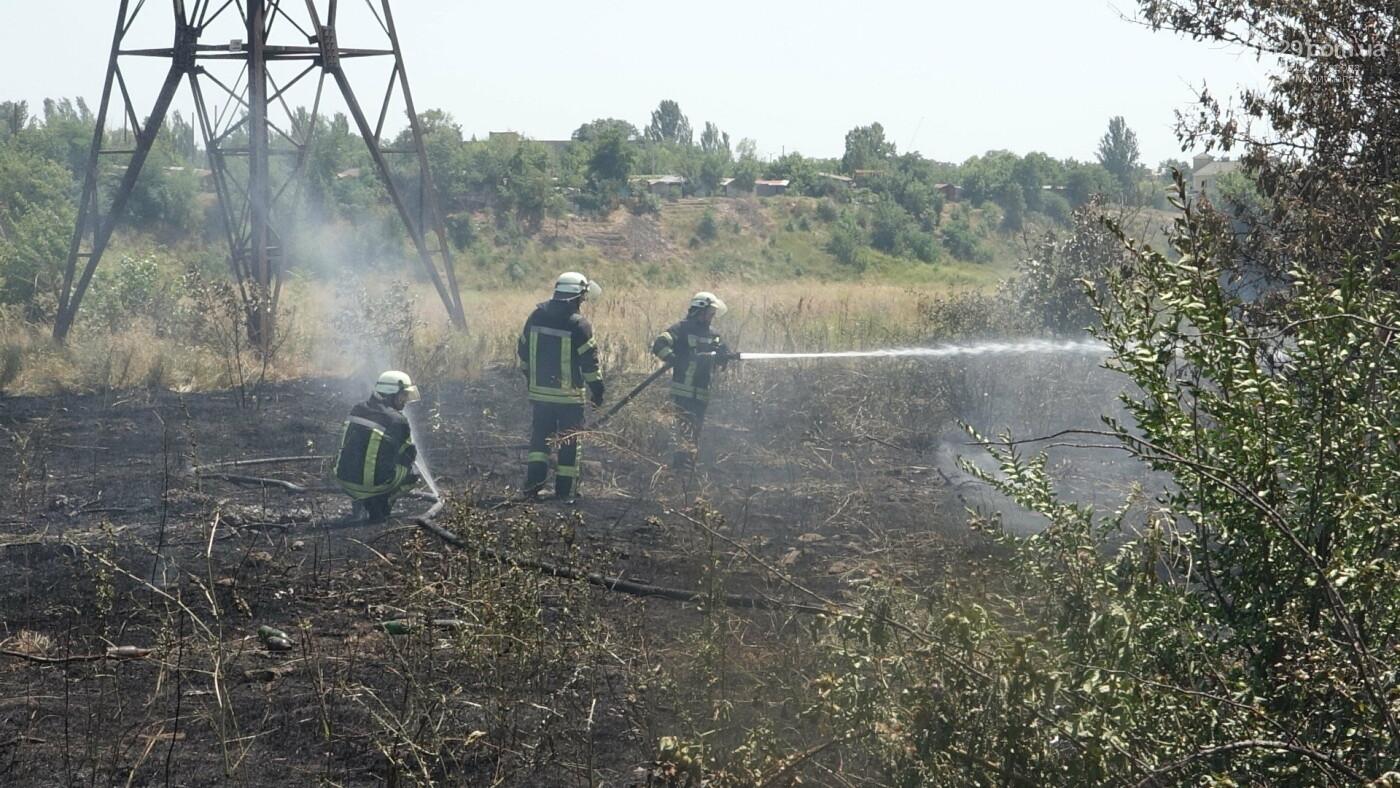 В Мариуполе за автостанцией выгорел гектар сухой травы, - ФОТО, ВИДЕО, фото-14