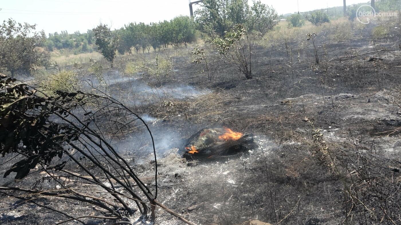 В Мариуполе за автостанцией выгорел гектар сухой травы, - ФОТО, ВИДЕО, фото-13