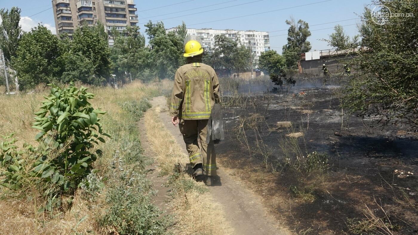 В Мариуполе за автостанцией выгорел гектар сухой травы, - ФОТО, ВИДЕО, фото-12