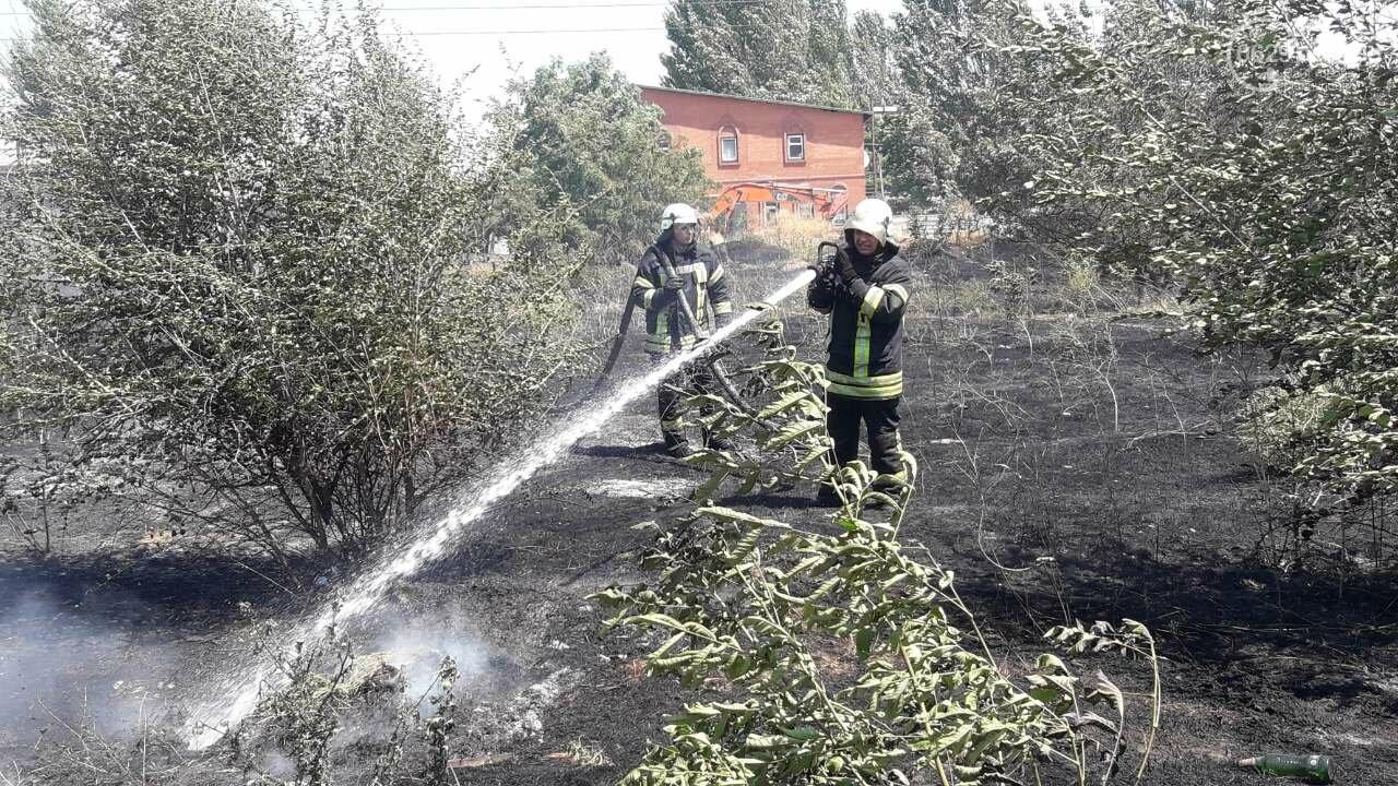 В Мариуполе за автостанцией выгорел гектар сухой травы, - ФОТО, ВИДЕО, фото-10