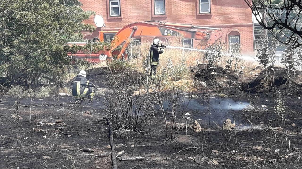 В Мариуполе за автостанцией выгорел гектар сухой травы, - ФОТО, ВИДЕО, фото-7