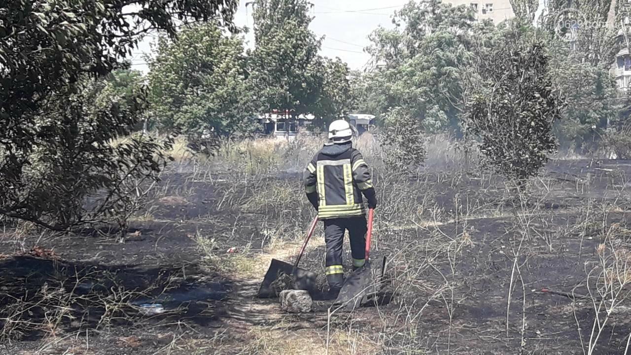 В Мариуполе за автостанцией выгорел гектар сухой травы, - ФОТО, ВИДЕО, фото-6