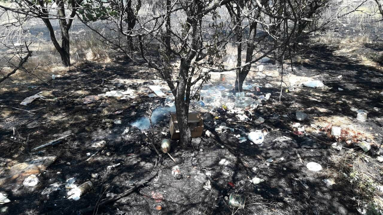 В Мариуполе за автостанцией выгорел гектар сухой травы, - ФОТО, ВИДЕО, фото-5