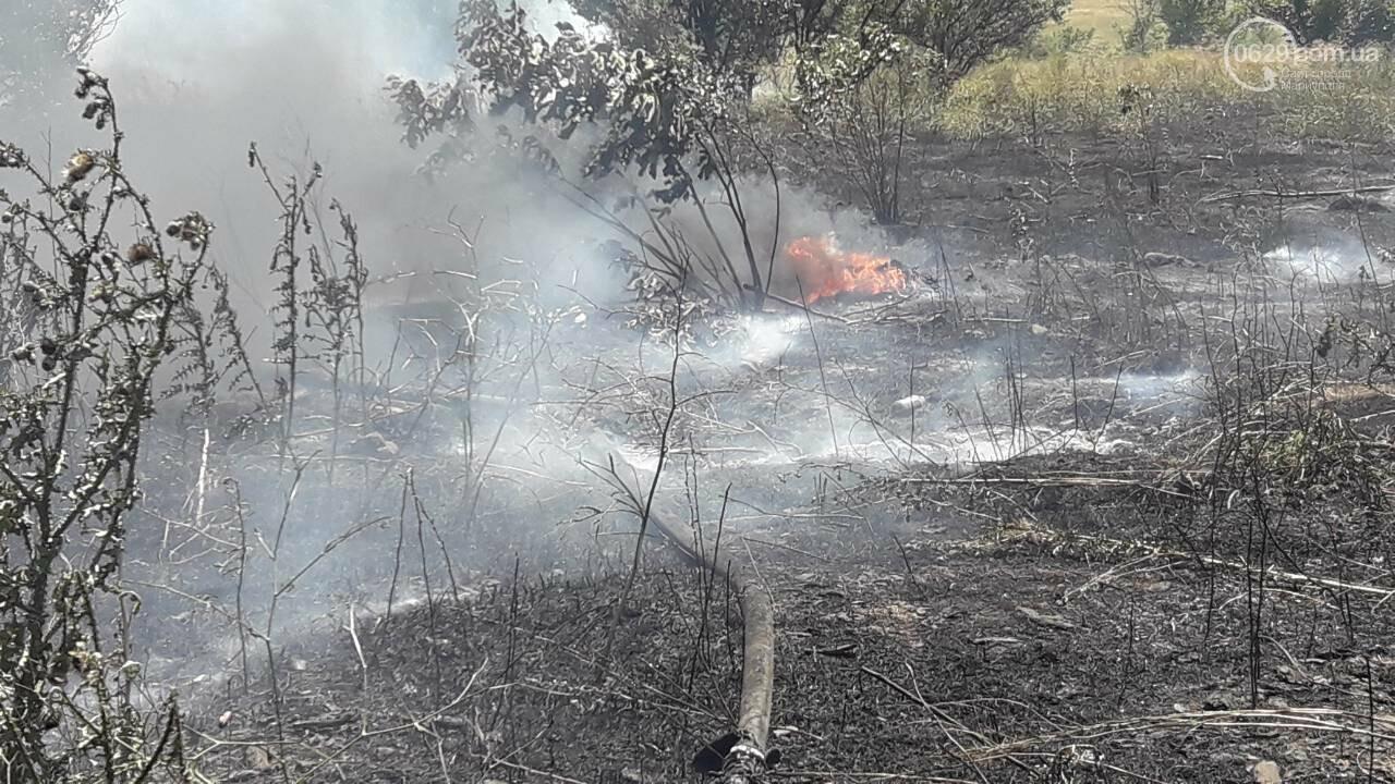 В Мариуполе за автостанцией выгорел гектар сухой травы, - ФОТО, ВИДЕО, фото-1